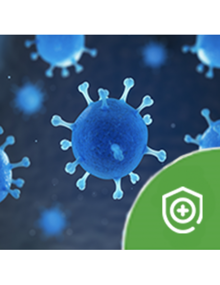 Autoimmune Health